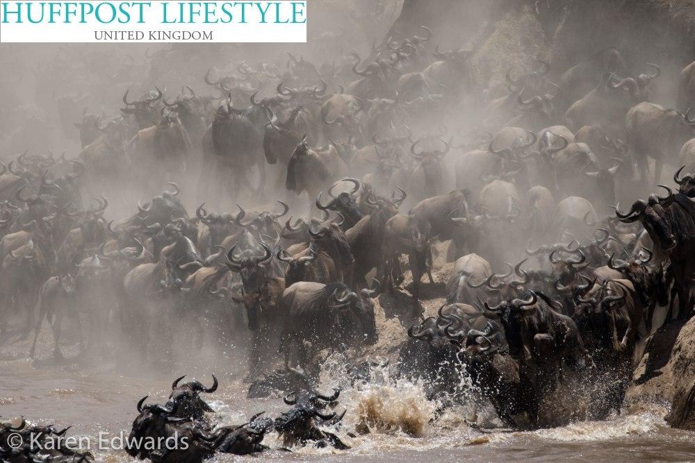 Karen Edwards schreibt  über die Masai Mara
